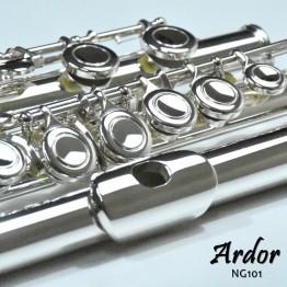 Ardor NG101