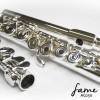 Fame AG250
